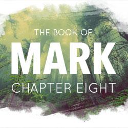book-mark-8