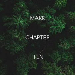 mark-chpt-10-330X330